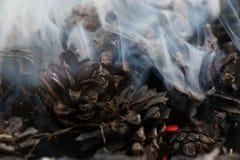 Χριστούγεννα και νέο έτος imege κάρτα Δασικοί κώνοι του FIR στην πυρκαγιά Στοκ Φωτογραφίες