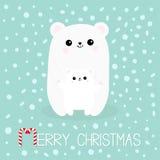 Χριστούγεννα καλάμων καρ&a Πολικός άσπρος μικρός λίγο cub αρκούδων Χαριτωμένος χαρακτήρας κινουμένων σχεδίων - σύνολο Μητέρα που  διανυσματική απεικόνιση