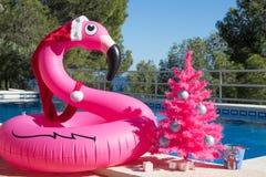 Χριστούγεννα καλές διακ& Ένας σημαντήρας φλαμίγκο που φορά το καπέλο Santa με ένα ρόδινο χριστουγεννιάτικο δέντρο από την πισίνα στοκ εικόνα με δικαίωμα ελεύθερης χρήσης