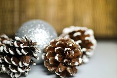 Χριστούγεννα νέο έτος κώνοι οικολογικός ξύλινος διακοσμήσεων Χριστουγέννων Στοκ Εικόνες