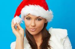 Χριστούγεννα νεοσσών στοκ εικόνες