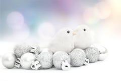 Χριστούγεννα πουλιών Στοκ φωτογραφία με δικαίωμα ελεύθερης χρήσης