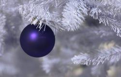 Χριστούγεννα που παγώνο&upsi Στοκ εικόνες με δικαίωμα ελεύθερης χρήσης
