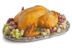 Χριστούγεννα Τουρκία Στοκ Εικόνα