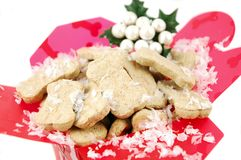 Χριστούγεννα doggie στοκ εικόνες
