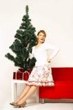 Χριστούγεννα gril Στοκ εικόνα με δικαίωμα ελεύθερης χρήσης