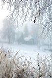 Χριστούγεννα hoarfrost στοκ εικόνες