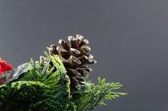 Χριστούγεννα Pinecone Στοκ Εικόνα