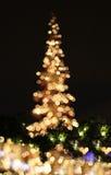 Χριστούγεννο-1 Στοκ εικόνα με δικαίωμα ελεύθερης χρήσης