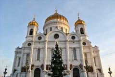 Χριστός ο καθεδρικός ναός λυτρωτών Στοκ Φωτογραφίες
