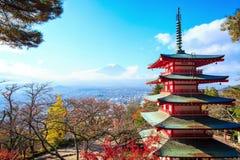 Χρονική πάροδος της εποχής πτώσης της ΑΜ Φούτζι στην Ιαπωνία με το συμπαθητικό κίτρινο χρώμα απόθεμα βίντεο