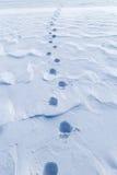 χρονικός χειμώνας χιονιού ιχνών Στοκ φωτογραφίες με δικαίωμα ελεύθερης χρήσης