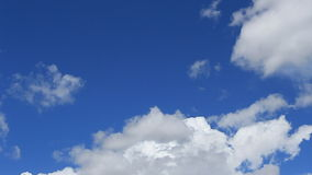 Χρονικό σφάλμα, άσπρα, γκρίζα, αυξομειούμενα σύννεφα κινήσεων απόθεμα βίντεο