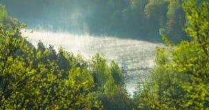 Χρονικό σφάλμα της γρήγορης υδρονέφωσης αύξησης από έναν ποταμό φιλμ μικρού μήκους