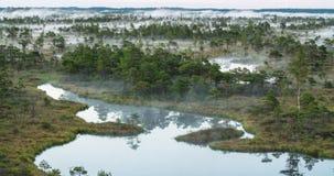 Χρονικό σφάλμα της υδρονέφωσης που αυξάνεται από ένα δάσος υγρότοπου φιλμ μικρού μήκους