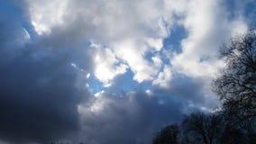 Χρονικό σφάλμα του μπλε ουρανού με τα άσπρα και γκρίζα σύννεφα και μερικά δέντρα απόθεμα βίντεο