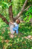 1χρονο πορτρέτο αγοράκι Στοκ εικόνες με δικαίωμα ελεύθερης χρήσης
