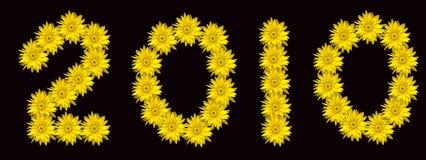 χρυσάνθεμο του 2010 κίτρινο στοκ εικόνες