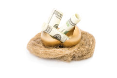 Χρυσά αυγά και δολάρια σε μια φωλιά Στοκ Εικόνες