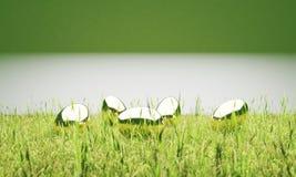 Χρυσά αυγά Πάσχας στην τρισδιάστατη απεικόνιση χορτοταπήτων ελεύθερη απεικόνιση δικαιώματος