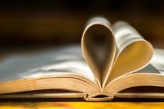 Χρυσά γαμήλια δαχτυλίδια, βιβλίο καρδιών, θαμπάδα υποβάθρου Στοκ εικόνα με δικαίωμα ελεύθερης χρήσης