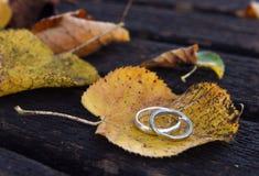 Χρυσά γαμήλια δαχτυλίδια σε μια κινηματογράφηση σε πρώτο πλάνο φύλλων φθινοπώρου Στοκ Εικόνα