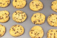 Χρυσά καφετιά μπισκότα τσιπ σοκολάτας σε έναν δίσκο ψησίματος Στοκ Φωτογραφίες