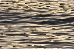χρυσά κύματα Στοκ Εικόνες