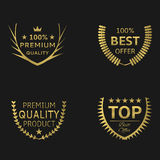 χρυσά στεφάνια δαφνών Στοκ εικόνα με δικαίωμα ελεύθερης χρήσης