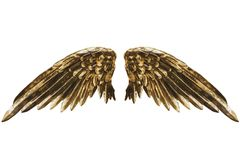 χρυσά φτερά Στοκ εικόνες με δικαίωμα ελεύθερης χρήσης