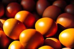 Χρυσά χρώματα των αυγών στοκ φωτογραφία με δικαίωμα ελεύθερης χρήσης