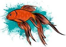 Χρυσά ψάρια Watercolor που απομονώνονται στο άσπρο υπόβαθρο με το σημάδι ελεύθερη απεικόνιση δικαιώματος