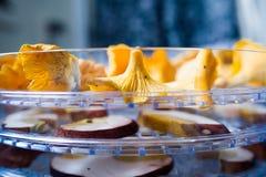 Χρυσά chanterelles στο στεγνωτήρα Στοκ εικόνες με δικαίωμα ελεύθερης χρήσης