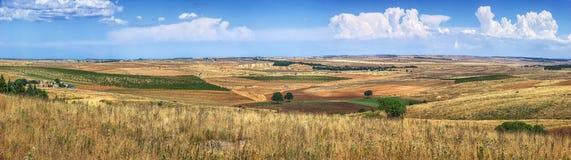 Χρυσά wheatfields και ένα άγονο τοπίο καλλιεργήσιμου εδάφους στη νότια Ιταλία Στοκ εικόνα με δικαίωμα ελεύθερης χρήσης