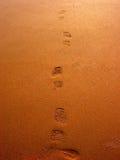 χρυσές άμμοι Στοκ Εικόνα