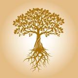 Χρυσές δέντρο και ρίζες επίσης corel σύρετε το διάνυσμα απεικόνισης Στοκ εικόνες με δικαίωμα ελεύθερης χρήσης