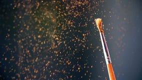 Χρυσές μύγες σκόνης από τη βούρτσα κίνηση αργή απόθεμα βίντεο