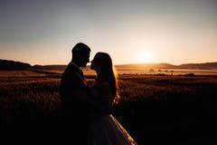 Χρυσές σκιαγραφίες του αγκαλιάσματος γαμήλιων ζευγών Στοκ Φωτογραφία