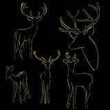 Χρυσές σκιαγραφίες των ελαφιών άγριων ζώων σε ένα μαύρο υπόβαθρο απεικόνιση αποθεμάτων