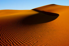 χρυσή άμμος αμμόλοφων Στοκ Εικόνα