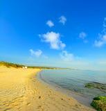 Χρυσή άμμος και πράσινα φύκια στη Σαρδηνία Στοκ εικόνες με δικαίωμα ελεύθερης χρήσης