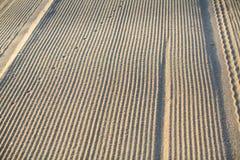 Χρυσή άμμος παραλιών, με θολωμένος και ίχνη Φύση Στοκ φωτογραφίες με δικαίωμα ελεύθερης χρήσης