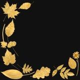 χρυσή επιλογή φύλλων στοκ φωτογραφία με δικαίωμα ελεύθερης χρήσης