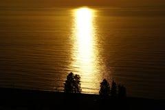 χρυσή θάλασσα στοκ εικόνες