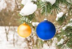 Χρυσή και μπλε σφαίρα χριστουγεννιάτικων δέντρων σε έναν χιονισμένο κλάδο δέντρων στοκ εικόνες