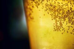 Χρυσή κινηματογράφηση σε πρώτο πλάνο μπύρας Στοκ Εικόνες