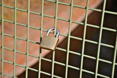 Χρυσή κλειδαριά ασφάλειας στο φράκτη Στοκ Φωτογραφίες