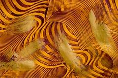 χρυσή πορφύρα συρραφών εγγράφου Στοκ Εικόνες