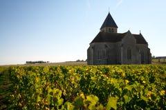 Χρυσή πύλη Burgundy, χωριό Chablis στην περιοχή Bourgogne, διάσημο για το άσπρο κρασί στοκ εικόνες