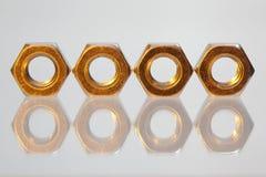 χρυσή σειρά καρυδιών Στοκ Εικόνες